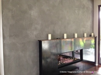 American Clay Feature Wall & Steel Fireplace- Whitney Architecture